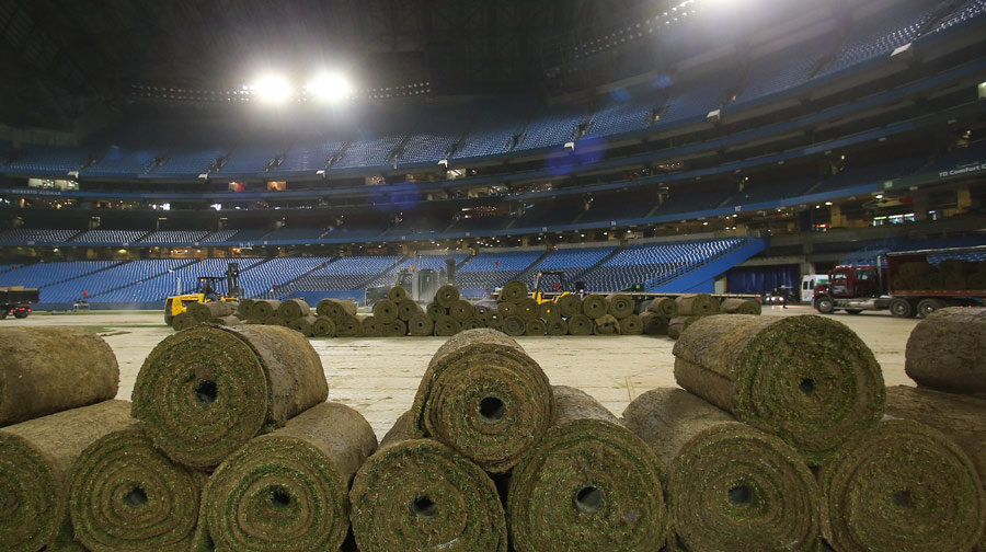Rolls of sod being removed after the completion of a soccer friendly between Brazil and Chile on November 19, 2013